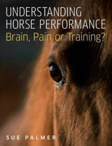 Understanding Horse Performance: Brain, Pain or Training?