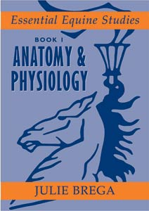Anatomy & Physiology (Essential Equine Studies 1) NOW IN STOCK
