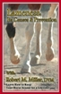 LAMENESS: ITS CAUSES & PREVENTION DVD